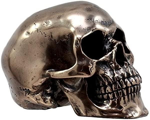 Ebros Bronzed Resin Homosapien Skull Figurine 4 5 Long Miniature Halloween Collectible Skeleton Head Cranium Terror Sculpture Ossuary Macabre Collection Skulls Skeletons Graveyards Halloween Theme