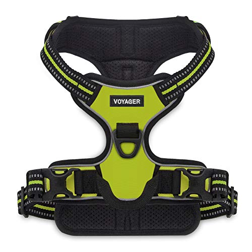 Voyager by Best Pet Supplies -Dual-ATTACHMENT No-Pull Adjustable Harness with 3M Reflective Technology, (Lime Green, Medium)