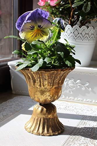 LB H&F Übertopf Blumentopf Metall Gold Amphore Pokal Shabby Vintage (BR)