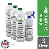 BactoDes Animal Tier Geruchsentferner Konzentrat - 3 x 1 Liter inkl. Mischflasche - Geruchskiller bei Katzenurin, Hundeurin und Kleintiere