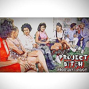 Project Bitch