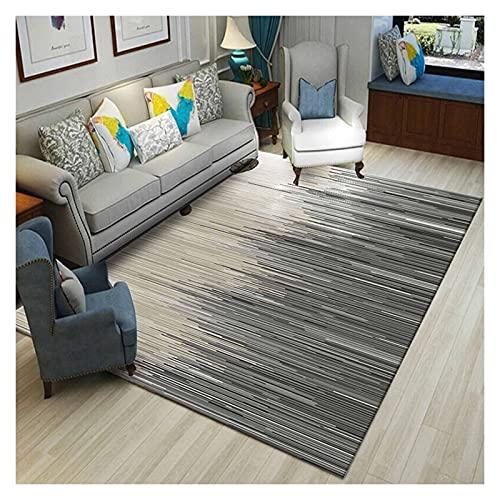 XXN Alfombras mullidas felpa, mantas decorativas, alfombras suaves, cómodos cojines adecuados para niños, sala de estar, dormitorio, 140 x 200 cm