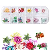 1 Box Dried Flowers for Nail Art, 12 Colors 3D Nail Art Stickers Dry Flowers Mini Real Natural Flowers Stickers Nail Decoration