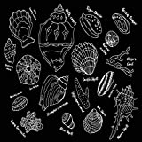 Uoopati Seashell Diamond Painting Kits for Adults, Shells Barnacles Beach Cockle Cockleshell Conch Black DIY 5D Pictures Round Drill Art Relaxation Wall Decor Stitch, 12x12 Inch