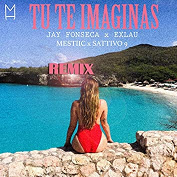 Tu Te Imaginas (Remix)