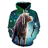 Men S Autumn and Winter Models 3D Printing Hoodie Autumn Men and Women Cool Wolf Fashion Casual Hoodie-We372_4XL