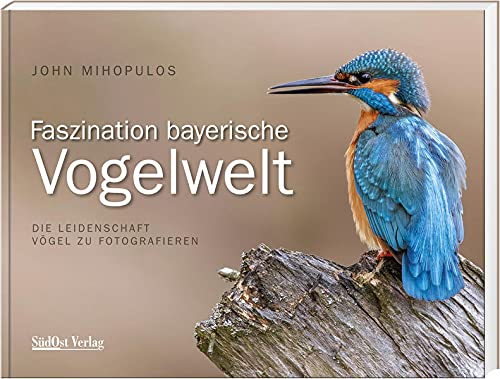 Faszination Bayerische Vogelwelt: Die Leidenschaft Vögel zu fotografieren