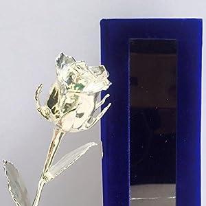 nexxa 24k silver dipped natural rose with blue gift box men & women – 6 inches silk flower arrangements