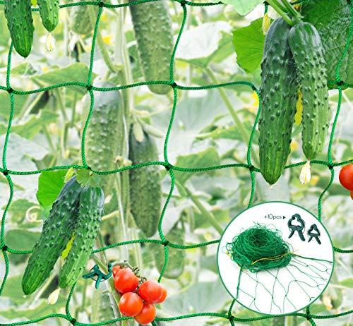Mocraft 3,5 x 2m Premium Ranknetz Verdickung Ranknetz mit großer Maschenweite und 10 STK Pflanzenclips, für Ernte von Gurken, Tomaten und Kletterpflanzen, Rankhilfe Netz für Garten und Gewächshaus