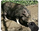 Yanteng Animal Design Cute Baby Pig Mousepad, Boar Mouse Pads
