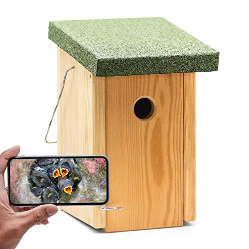 """Kamera im Vogelhaus """"Bechstein"""" Vogelhaus mit Kamera - Holz Nistkasten mit WLAN-Kamera zum Aufhängen - Full-HD Auflösung, Nachtsichtfunktion, Mikrofon, Aufnahme - Zugriff per Smartphone App"""