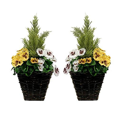 Greenbrokers Limited 2x Künstliche Terrasse Pflanzgefäßen–Gelb & Weiß Blumen & Konifere/Zeder Formschnitt