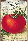 Blechschild, 20 x 30 cm, Tomaten-Gemüse, Poster, Kunst,