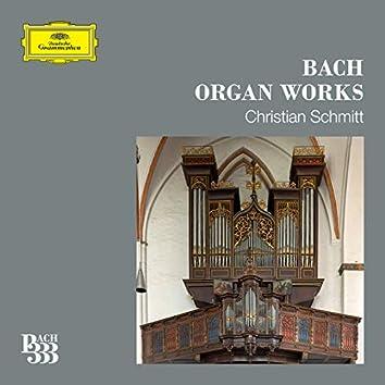 Bach 333: Organ Works