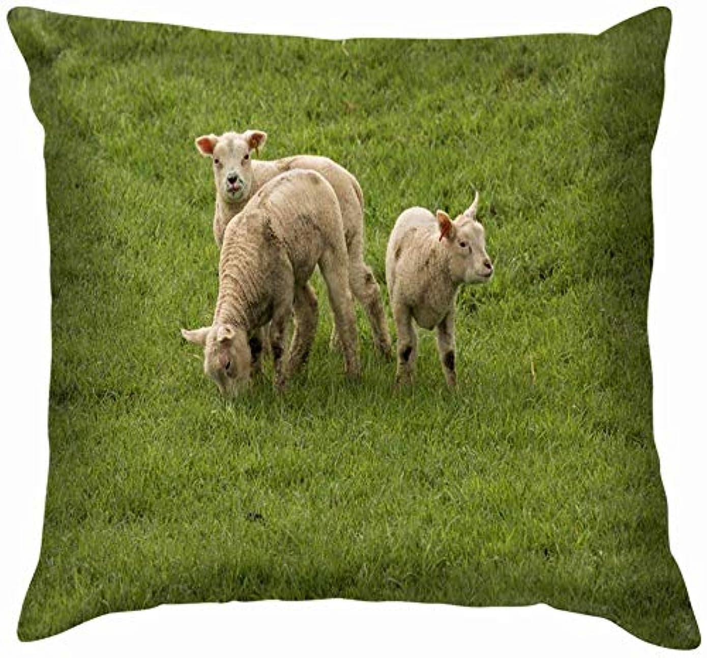 ロッド泥だらけ吸う3つの放牧羊緑の牧草地の動物野生動物農業自然投球枕カバーホームソファクッションカバー枕ギフト45x45 cm
