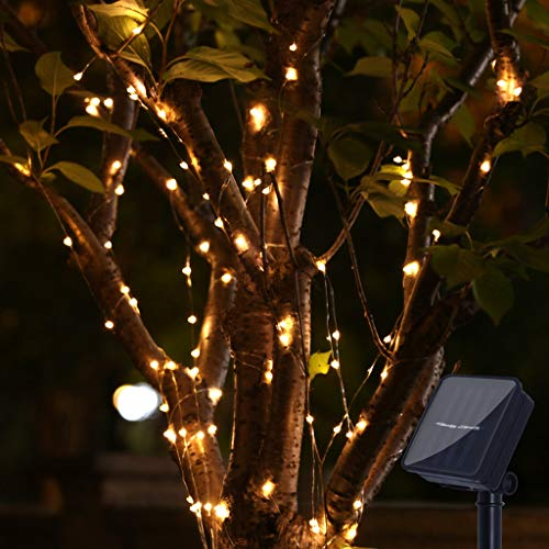 Nesee Solar 100 LED String Fairy Lights, Starry Copper String Lighting, Waterproof Watering Can Light, Solar Powered Firefly Moon for Plants Tree Vines Decorations, Warm White
