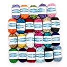 Wextile 24 Assorted Colors Acrylic Yarn Skeins Bonbons with 7 E-Books - Total of 525 Yards Craft Yarn for Knitting and Crochet Perfect for Any Knitting and Crochet Mini Project