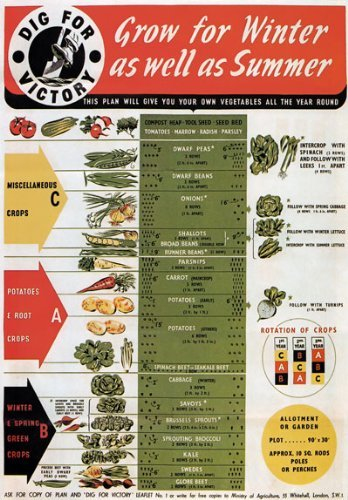 WB8 Vintage WW2 Dig For Victory Grow For Winter & Summer Vegetables British WWII War Poster Re-Print - A4 (297 x 210mm) 11.7' x 8.3'