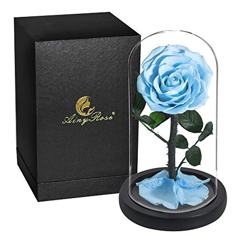 SW AINYROSE Eternal Rose -Preserved Real Rose in Glass Dome Gift Eternal Flower,Beautiful Creative Gift for Valentine's Day Mother's Day Christmas Anniversary Birthday Thanksgiving (Sky Blue)