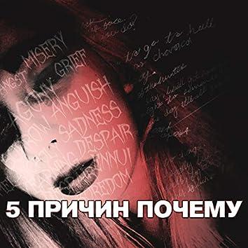 Пять причин почему