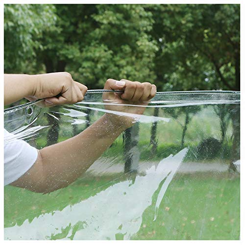 YYFANG Lona De Protección, Cubierta Vegetal, Carpa Impermeable de PVC Transparente de 450g / M², Toldo a Prueba de Viento con Orificios de ventilación (Color : Claro, Size : 3X3M)