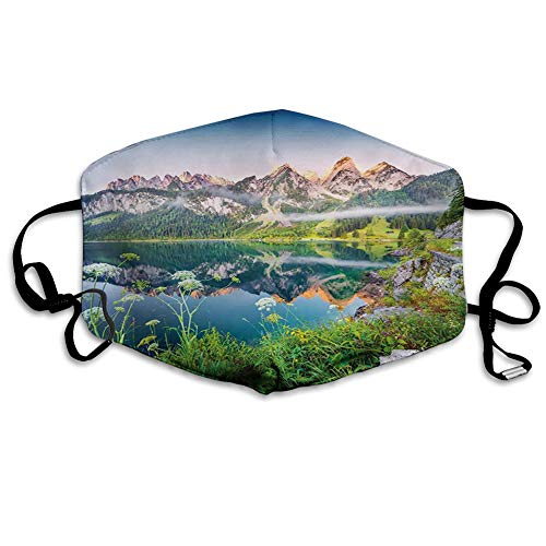 Face Mask Reusable Washable Masks Cloth for Men and Women Misty Summer Morning on Austrian Alps Mountain Range