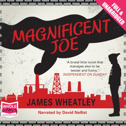 Magnificent Joe cover art