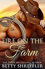 Fire On The Farm (Second Chance Cowboy Romance) (Healed Hearts Romances Book 1)
