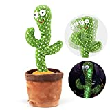 Dancing Cactus Toy,Talking Repeat Singing Sunny Cactus Toy,Sunny The...