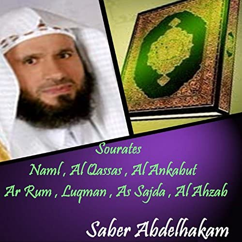 Saber Abdelhakam