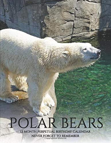 Perpetual Birthday Calendar: Polar Bears Wild Animals, Birthday Book & Anniversary Calendar 8.5x11 Special Event Reminder Book Family Planner Date ... School, Memory Keepsake Housewarming Gift