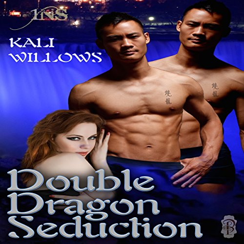 Double Dragon Seduction audiobook cover art