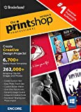 The Print Shop Professional 6.0 [PC Download]
