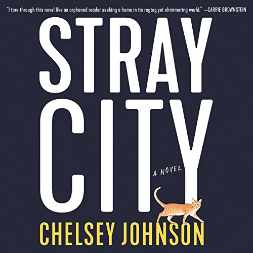 Stray City audiobook cover art