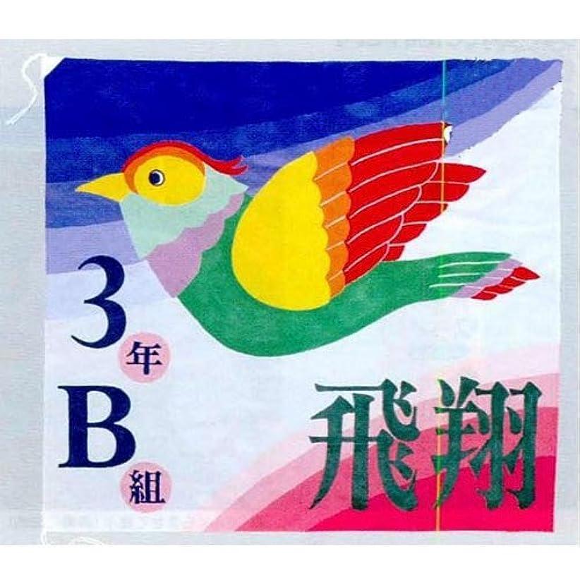 乱雑なクレア運動学級旗 B18-4007