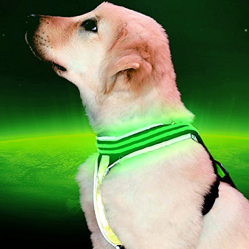 Pet Industries] Reflective LED Dog Harness -USB Rechargeable