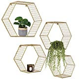 Set of 4 Gold Hexagon Wall Shelves, Floating Decorative Wire Wall Mounted Shelf,...