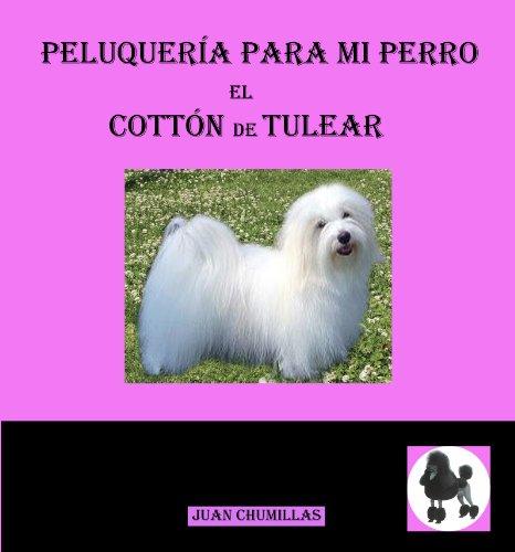 Coton de tulear (peluquería para mi perro nº 10) de [juan chumillas]