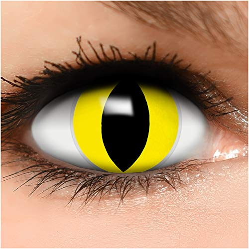 Farbige Kontaktlinsen Katze in gelb + Behälter - Top Linsenfinder Markenqualität, 1Paar (2 Stück)