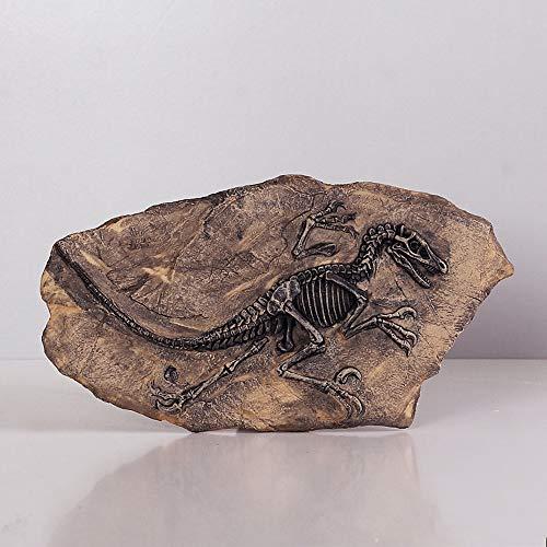 Mollaer - Estatua de dinosaurio fósil de resina, esqueleto de imitación, herramienta de enseñanza, decoración para el hogar y la oficina