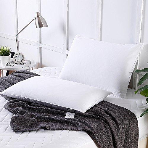 LilySilk Oreiller en Soie sur Mesure Douillet Garnissage 100% Longues Fibres de Soie avec Housse Coton 40x60cm