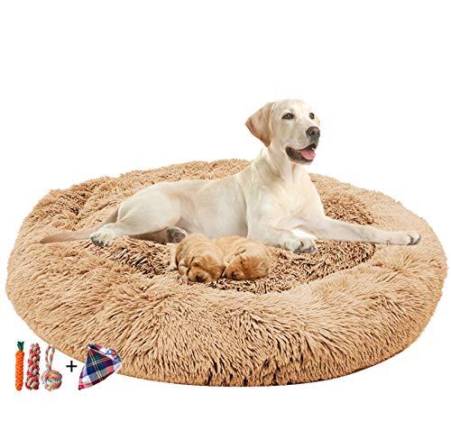 ping bu Großes Hundebett, mittelgroß, orthopädisch, beruhigend, Schlafkorb, grau, waschbar (Beige, L 78,7 cm)