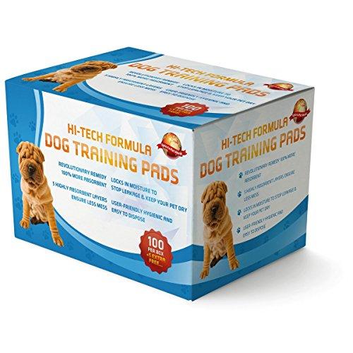 100 Empapadores Para Entrenar A Cachorros + 5 Extra GRATIS | 60 cm x 60 cm Nuevo Tamaño Superabsorbente | Esta Nueva Y Unica Solución De 5 Capas Protege...