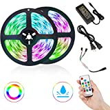 Image: DLIANG LED Strip Light Kit DreamColor 32.8ft Flexible Tape Lights 5050 SMD RGB 300 LEDs Waterproof IP65 Rope Light with RF Wireless Remote Controller and 12V Power Adapter for Home Kitchen Party Deco