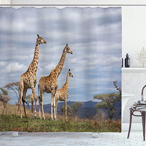 ABAKUHAUS Afrika Duschvorhang, Afrikanische Giraffen-Familie, Bakterie Schimmel Resistent inkl. 12 Haken Waschbar Stielvoller Digitaldruck, 175 x 200 cm, Tan Blau