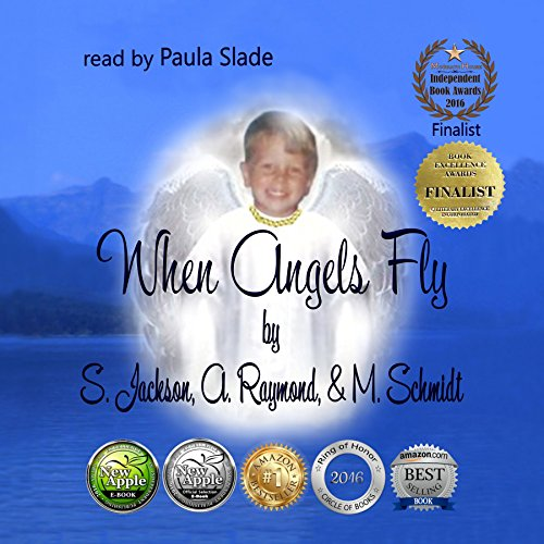 When Angels Fly audiobook cover art