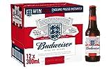 Budweiser Lager Beer Bottle, 12 x