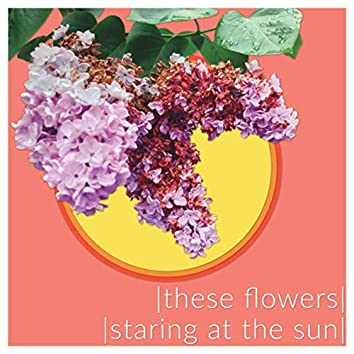These Flowers/Staring at the Sun