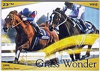 JRA 日本中央競馬会 日本漫遊スタンプラリー 参加賞 競馬トレーディングカード 1999年 有馬記念 グラスワンダー ウインズ新宿限定配布 ホビーアイテム