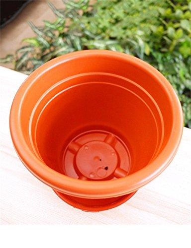 XYZ Spesso plastica vasi da fiori, fiori e ortaggi Pot, la protezione ambientale Titolare delle piante, Planter Fiore delicato durevole